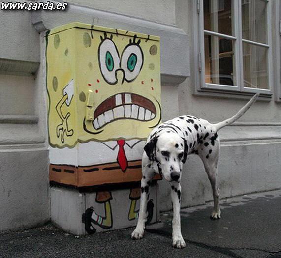 Los perros y bob esponja