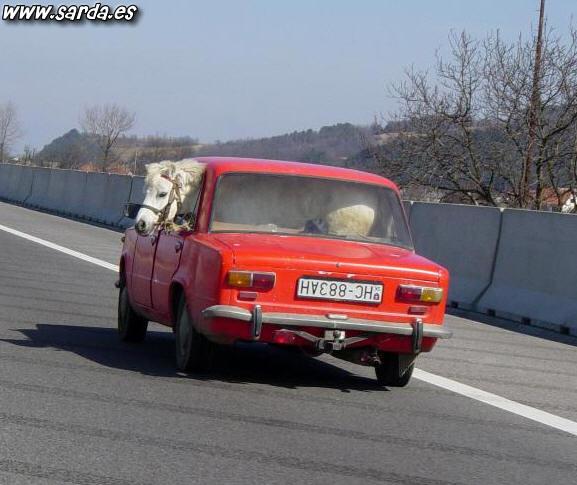 El caballito de Ferrari...